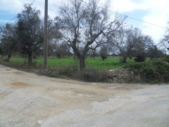 Galatone farmland in c. from Camascia - 2