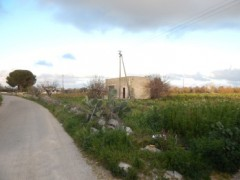 Galatone, agricultural land with ruin - 7