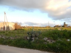 Galatone, agricultural land with ruin - 6