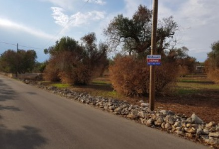 Galatone, agricultural land in three stones