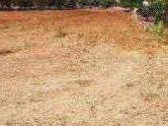For sale agricultural land with ruin - 5