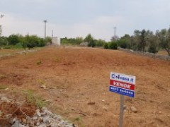 For sale agricultural land with ruin - 6